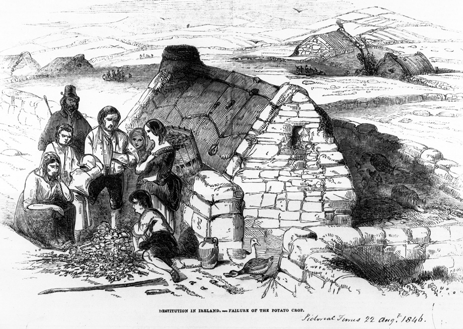 Destitution in Ireland from the London Pictorial Times, 22 August 1846. NLI ref. HP (1846) 2